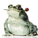 Жаба и роза. Сказка В. М. Гаршина